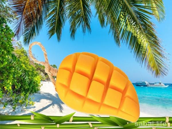Натуральное мыло манго